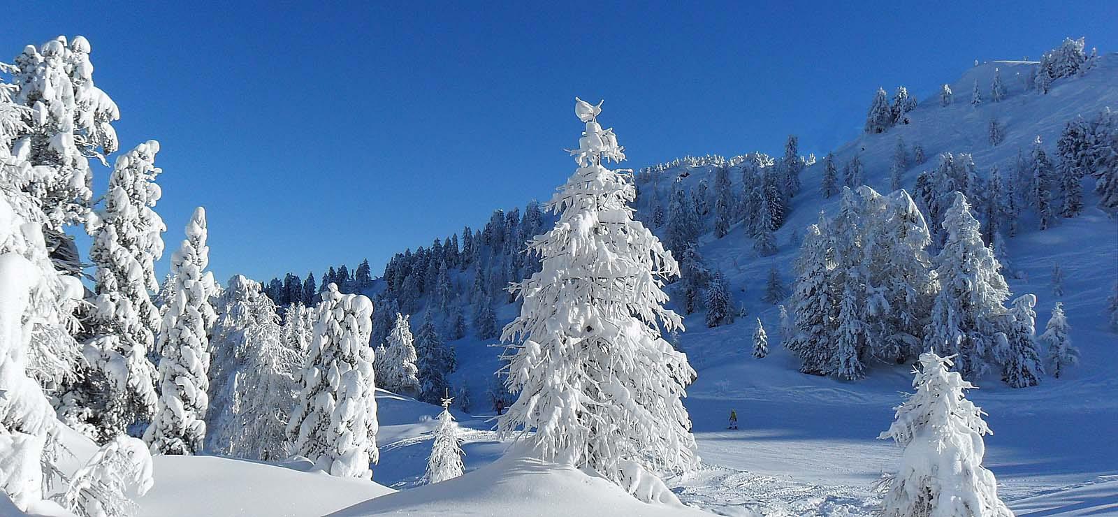 Inverno In Val Di Rabbi Nella Natura Incontaminata Del Trentino Residence Bonetti Rabbi